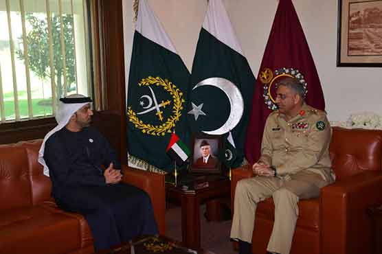 Ambassador of UAE calls on COAS Gen Qamar Bajwa