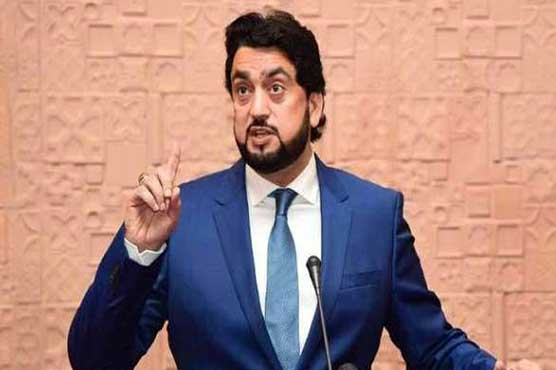 Shehryar Khan Afridi calls for strengthening ties with Iran