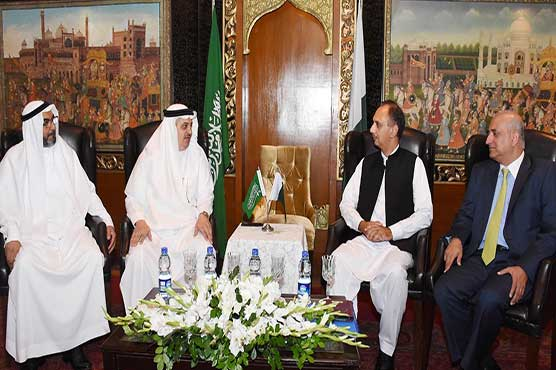KSA shows interest to invest in alternative energy sector
