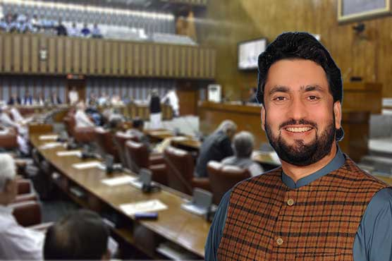 Decision about granting nationality to refugees after consensus: Afridi