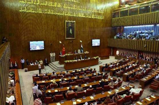 Joint opposition stages walkout in Senate against gas price hike