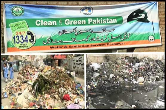 Clean Green Pakistan Drive busted in Peshawar – Is PTI unaware of performance of its own initiatives?