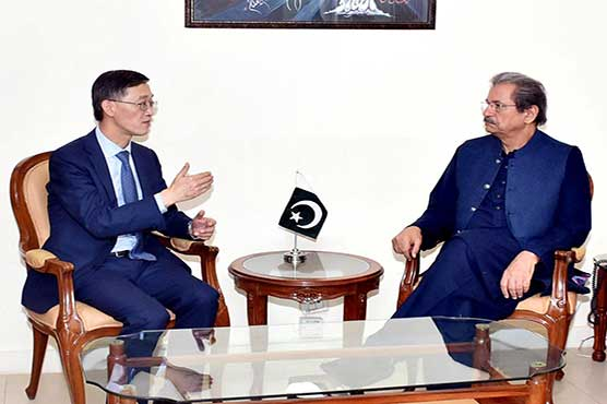 Pakistan to learn from China's experiences for introducing uniform education system: Shafqat