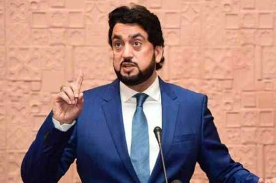 Shehryar for strict laws against child abduction