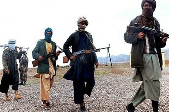 Taliban announce spring offensive amid Afghan peace push