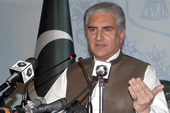 Will succeed in making 'clean and green' Pakistan: FM Qureshi