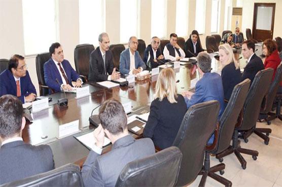 Hafeez briefs US delegation to ensure economic discipline in country