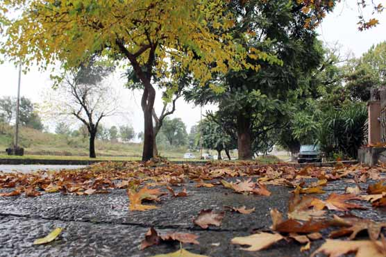 Rain turns weather chilly in parts of Punjab