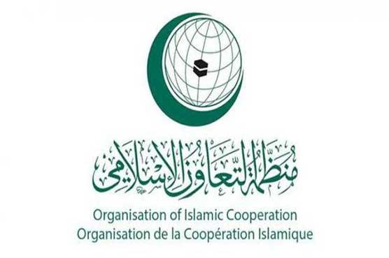Malaysia summit would splinter Islamic solidarity: OIC