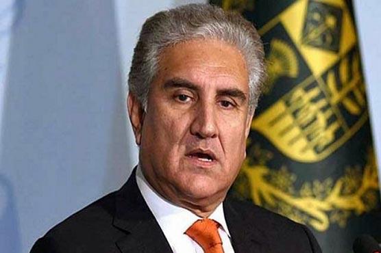FM Qureshi grieved over loss of lives in Kazakh plane crash