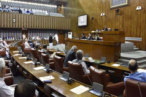 Govt pledges to review Hajj policy 2019 after opposition protests in Senate