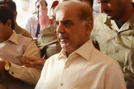 Shahbaz's MRI report indicates pain in spinal cord