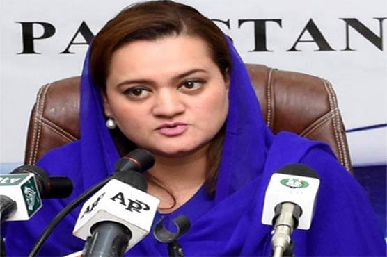NAB should rename itself to 'Noon Accountability Bureau,' says Marriyum Aurangzeb