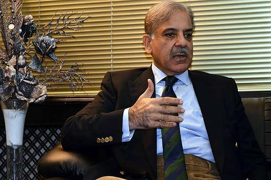 Shehbaz thanks Allah for SC decision in Avenfield reference