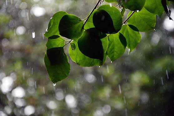 Met Office forecasts more rain in different parts of the country