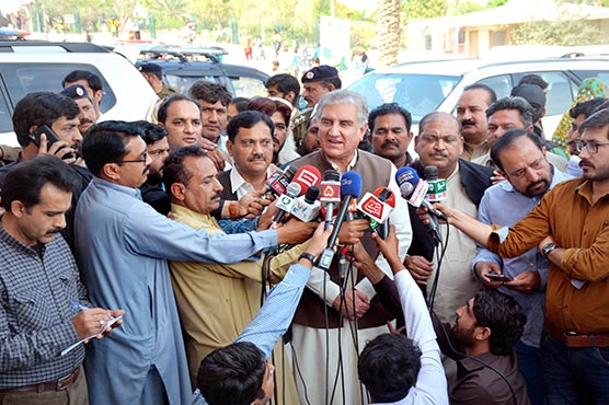 FM Qureshi calls for unity to cope with challenges