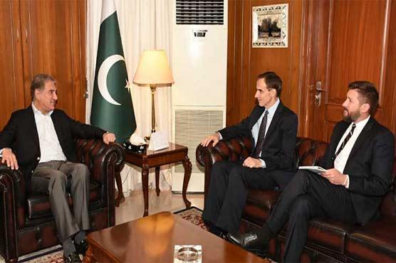 FM Qureshi meets US Charge D' Affaires Paul, discusses Afghan peace process