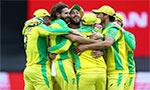 ICC World Cup 2019: Finch, Starc shine as Australia beat Sri Lanka by 87 runs