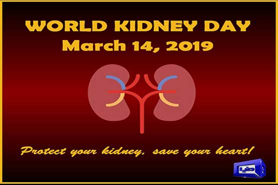 World Kidney Day being observed today - Pakistan - Dunya News