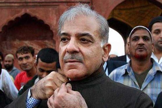 Ramzan Sugar Mills case: Court postpones indictment of Shehbaz, Hamza