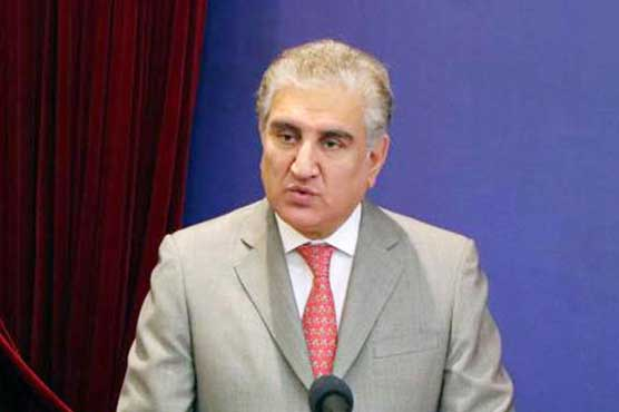 Consensus on NAP's political part urgently needed: FM Qureshi