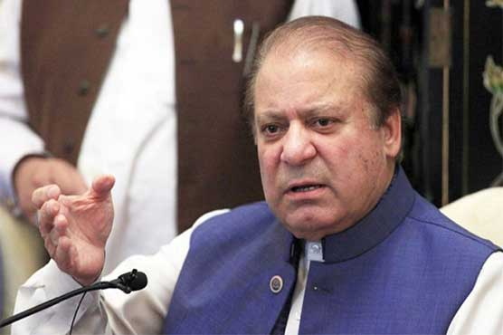 Nawaz Sharif permits PML-N to raise protest against govt: sources