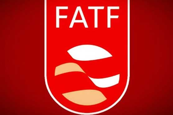Pakistan delegation submits implementation report to FATF