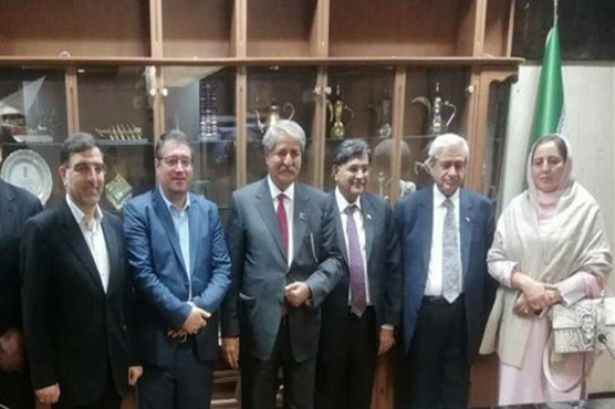 Pak-Iran Friendship Group stresses need for improving trade relations