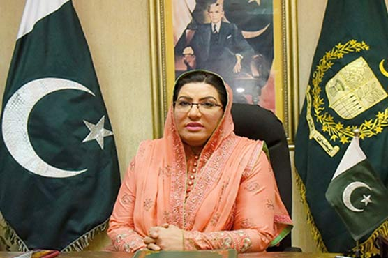 We disagree with U.S. concerns over CPEC: Firdous