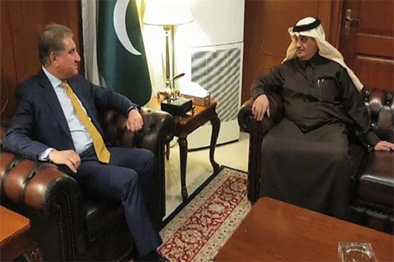 Saudi ambassador meets FM Qureshi