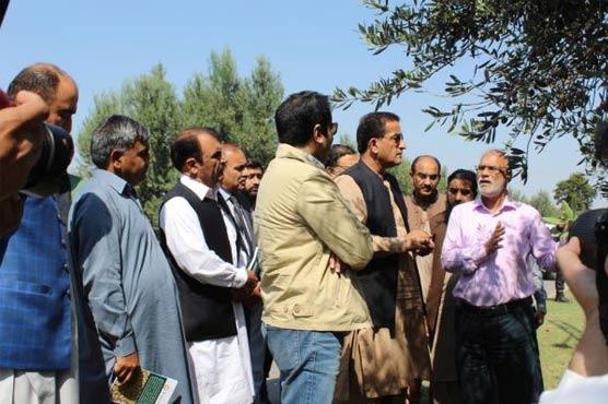 50 mln Olive Tree Tsunami drive to be launched soon: Malik Amin