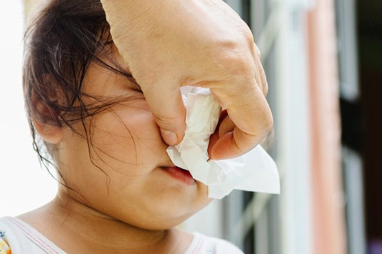 Mucus contains secret ability to subdue germs: study
