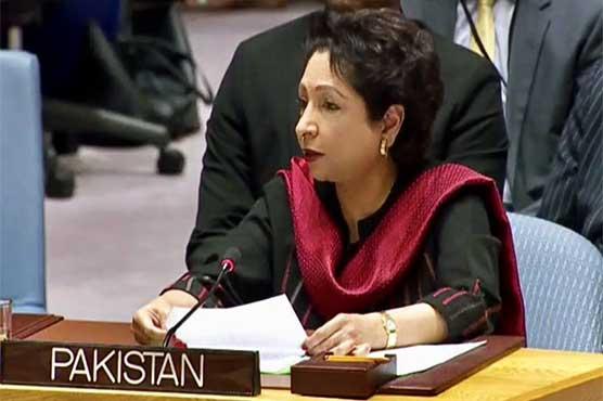Dunya News: Pakistan News Updates | Latest & Breaking News