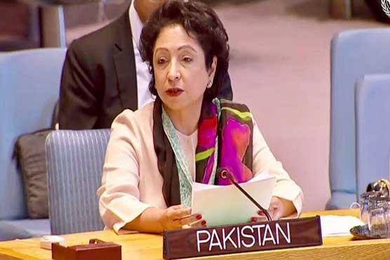 PM Imran will be voice of Kashmiri people at UNGA: Maleeha Lodhi