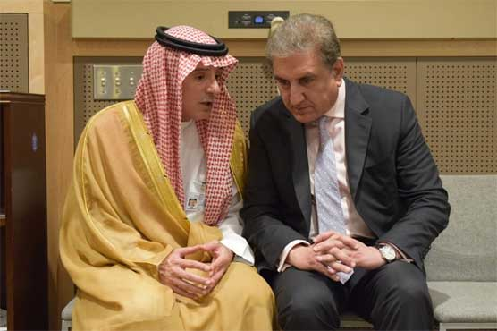 FM Qureshi meets Saudi counterpart, discusses Kashmir issue and regional peace