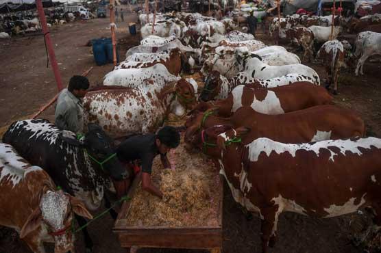 Sindh govt extends Eid holidays