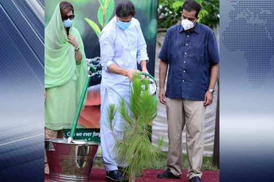 Tiger Force day: Imran Khan launches country's largest tree plantation drive