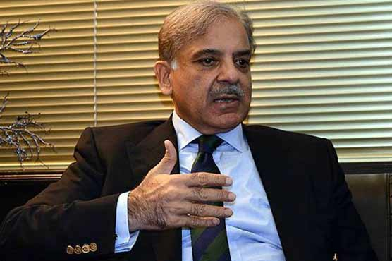 Shehbaz laments damage caused by rains in different parts of country