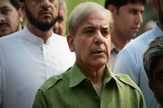 NAB presents witnesses before court in money laundering case against Shehbaz's family