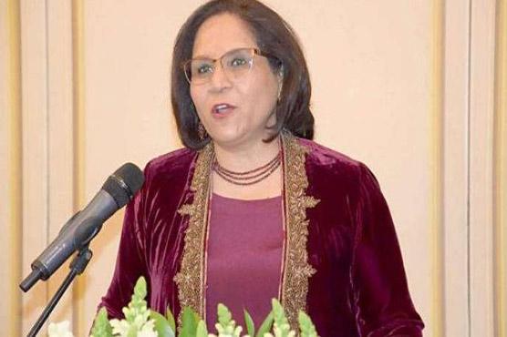 CPEC's second phase starts with establishment of SEZs: Ambassador Hashmi