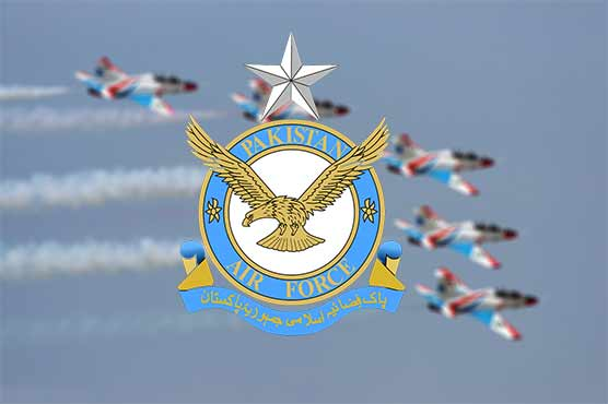 Sincerity of purpose, devotion lead to success: Air Chief
