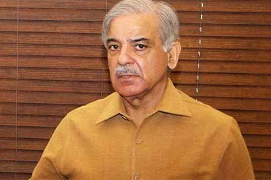 LHC extends Shehbaz Sharif's bail till July 16