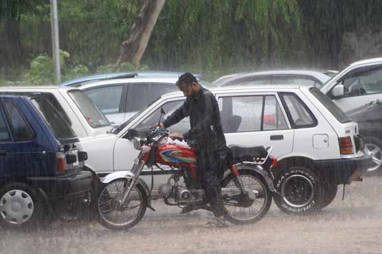 Widespread rain makes weather pleasant