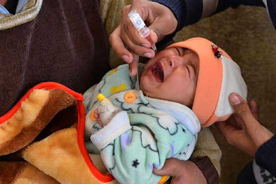 Polio vaccination activities to resume from July 20 in KPK