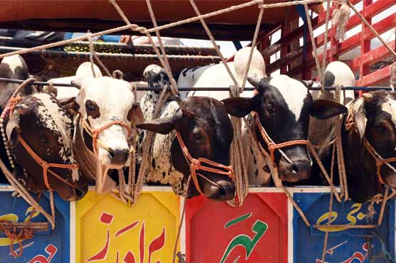 Three holidays finalized for Eidul Azha: sources