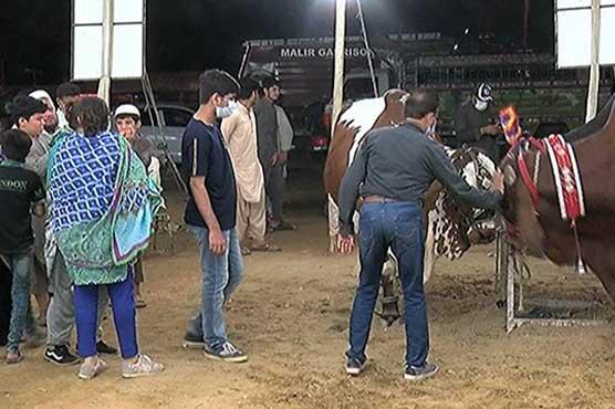 Cattle markets witness crowd as Pakistanis set to celebrate Eid-ul-Azha tomorrow