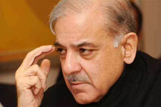 Shehbaz Sharif demands at least 10pc raise in salaries of govt employees