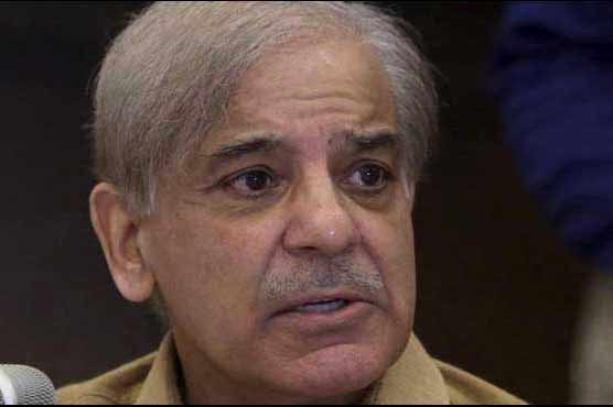 India's temporary UNSC membership is a matter of shame for the UN: Shehbaz Sharif