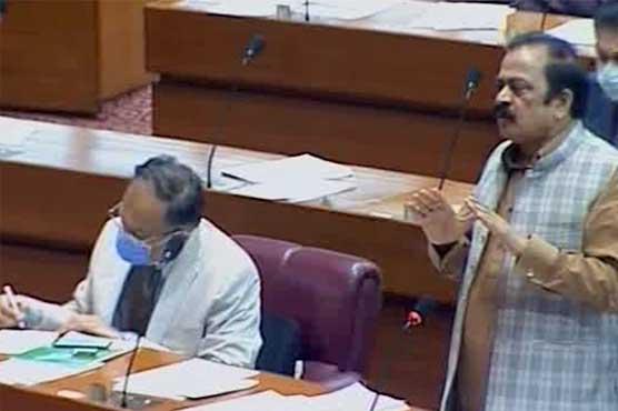 Govt benefiting mafia by increasing petrol prices: Rana Sanaullah