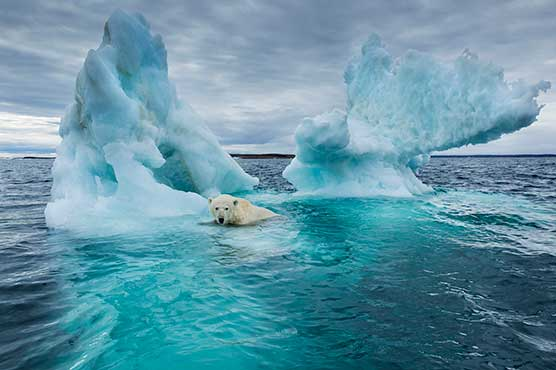 Global warming to continue no matter what we do: study